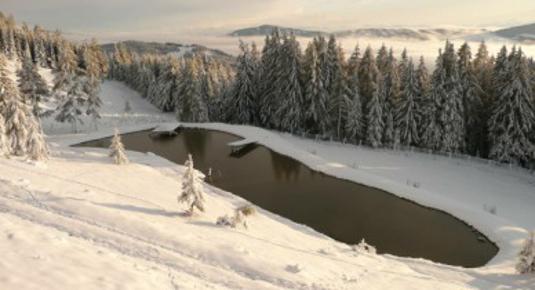 Bernachtung in einer urigen bergh tte kurzer for Fischteich im winter